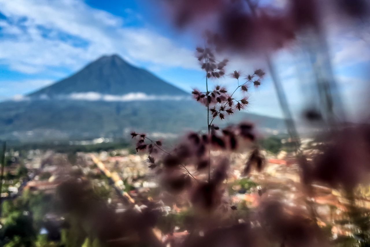 Volcano Nature Landscape Snapshots Of Life Snapshot Flowers Antigua Guatemala Adventure Enjoying Life Telling Stories