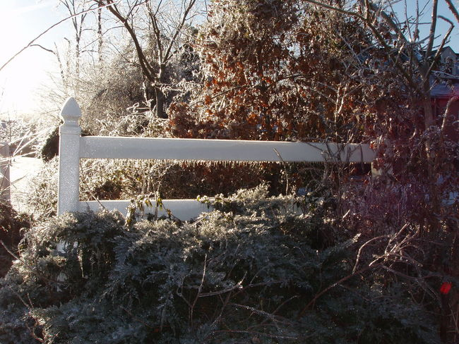 Cold Temperature Covering Frozen Ice Ice Covered  Ice On Fence Ice Storm Obsolete Season  Weather White Fence Winter Winter