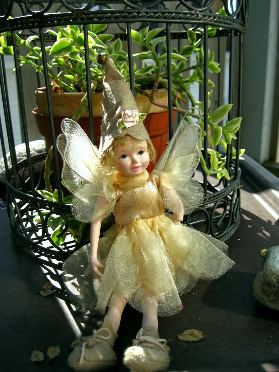 Beautiful stock photos of fairy, Canada, Childhood, Close-Up, Day