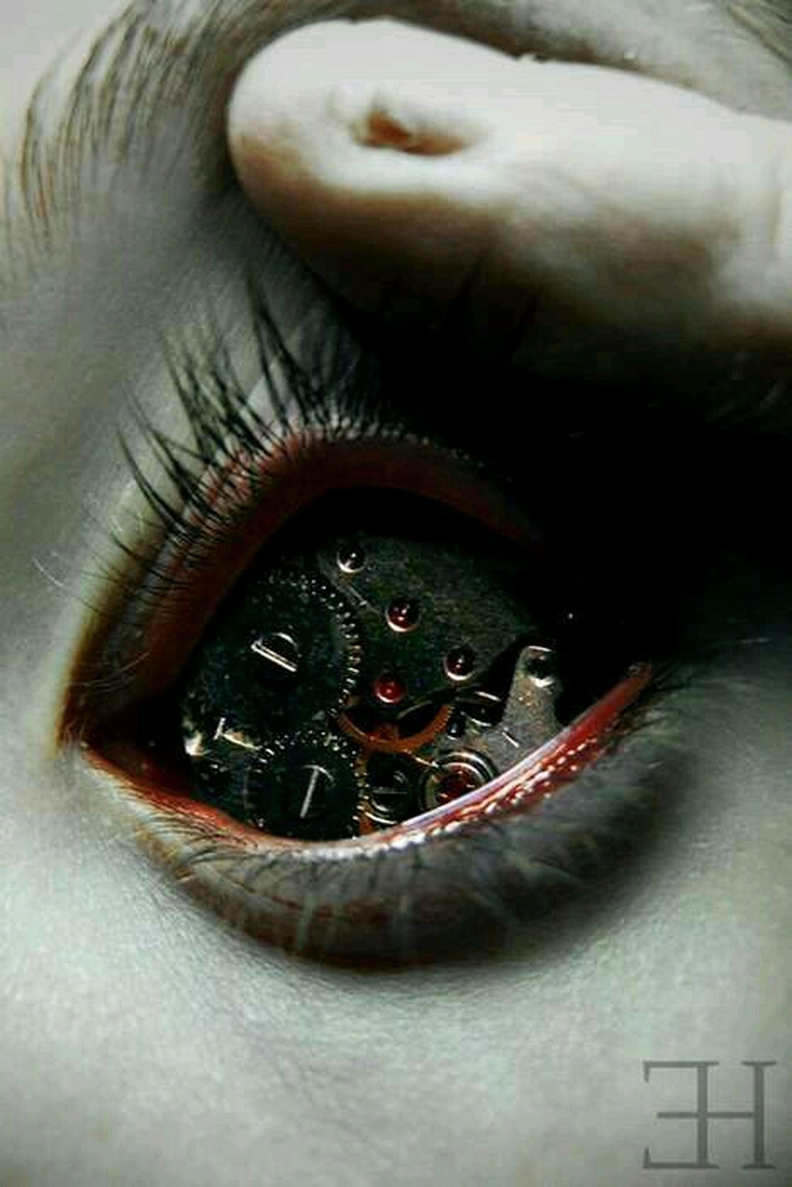 close-up, human eye, part of, eyesight, eyelash, extreme close-up, indoors, sensory perception, portrait, extreme close up, looking at camera, unrecognizable person, human face, eyeball, vision, detail, human skin