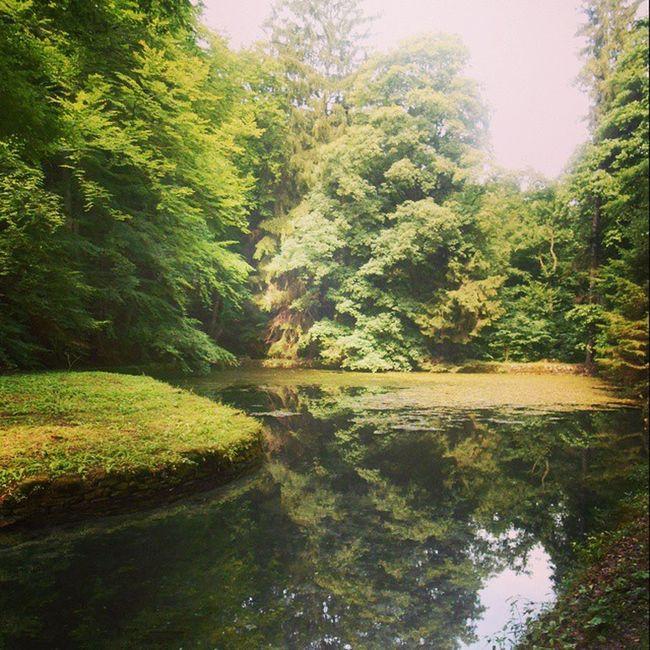 Bükk Nemzetipark Hungary Lake nature mik summer szilvasvarad szalajka