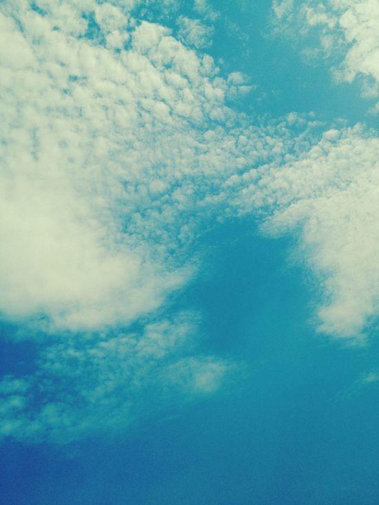 Sky 。