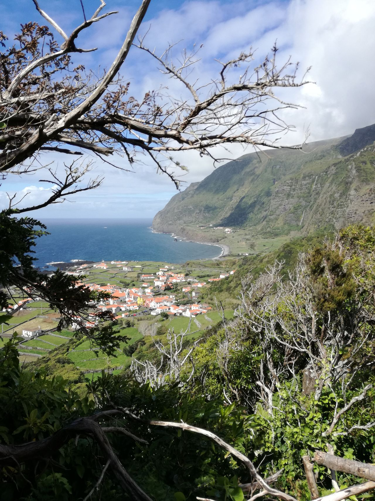 Azores Floresisland Faja Grande