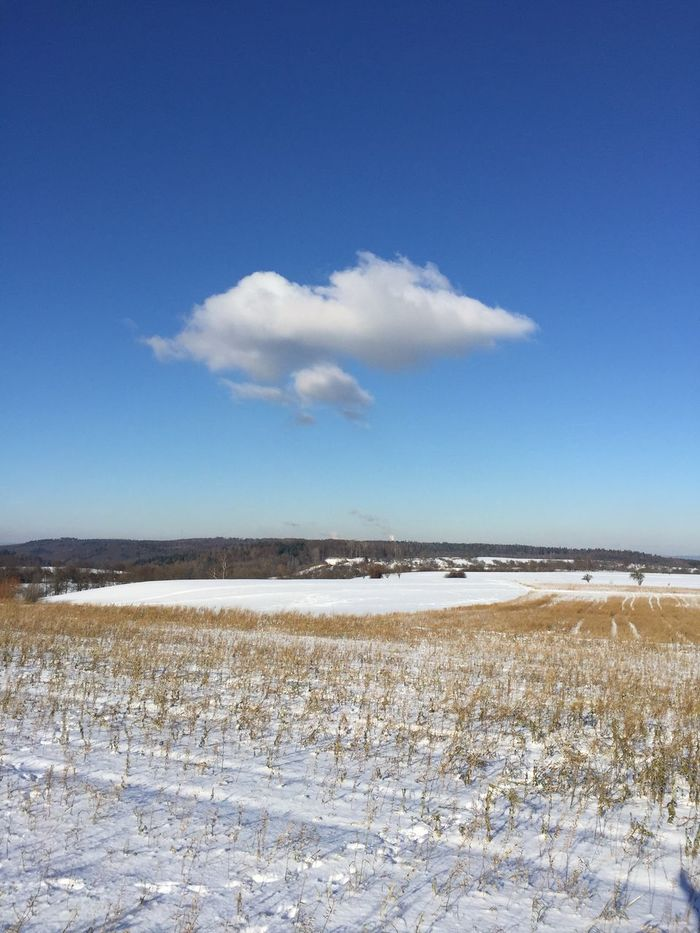 Winter landscape with single cloud Winter Landscape Single Cloud Winter Landscape Sky Snow Cloud - Sky Winter Day Wintertime Cold Outside Cloud In Sky Beauty In Nature No People