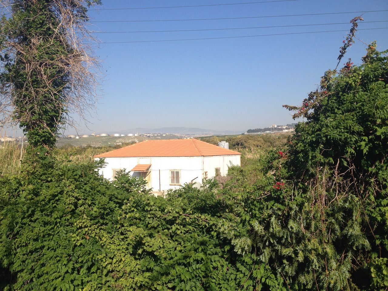 House Green Color No People Growth Clear Sky Nature Sky South Lebanon