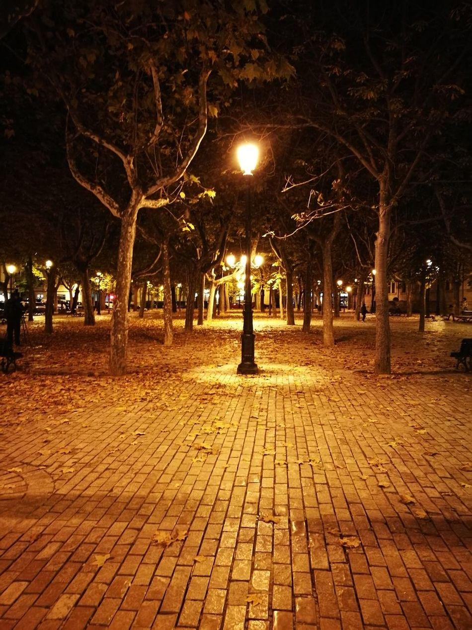 Plaza Sagasta Logroño