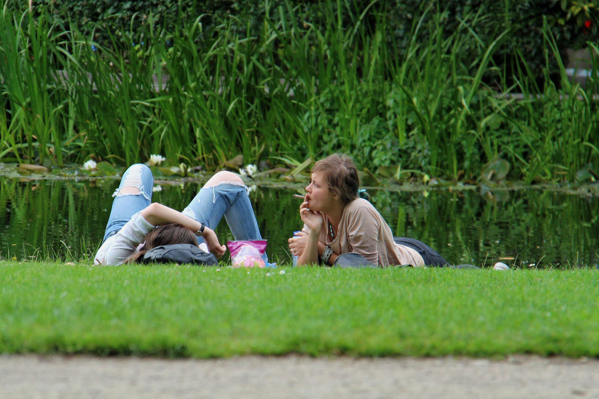 Grass Smoking Pott Amsterdam Vondelpark