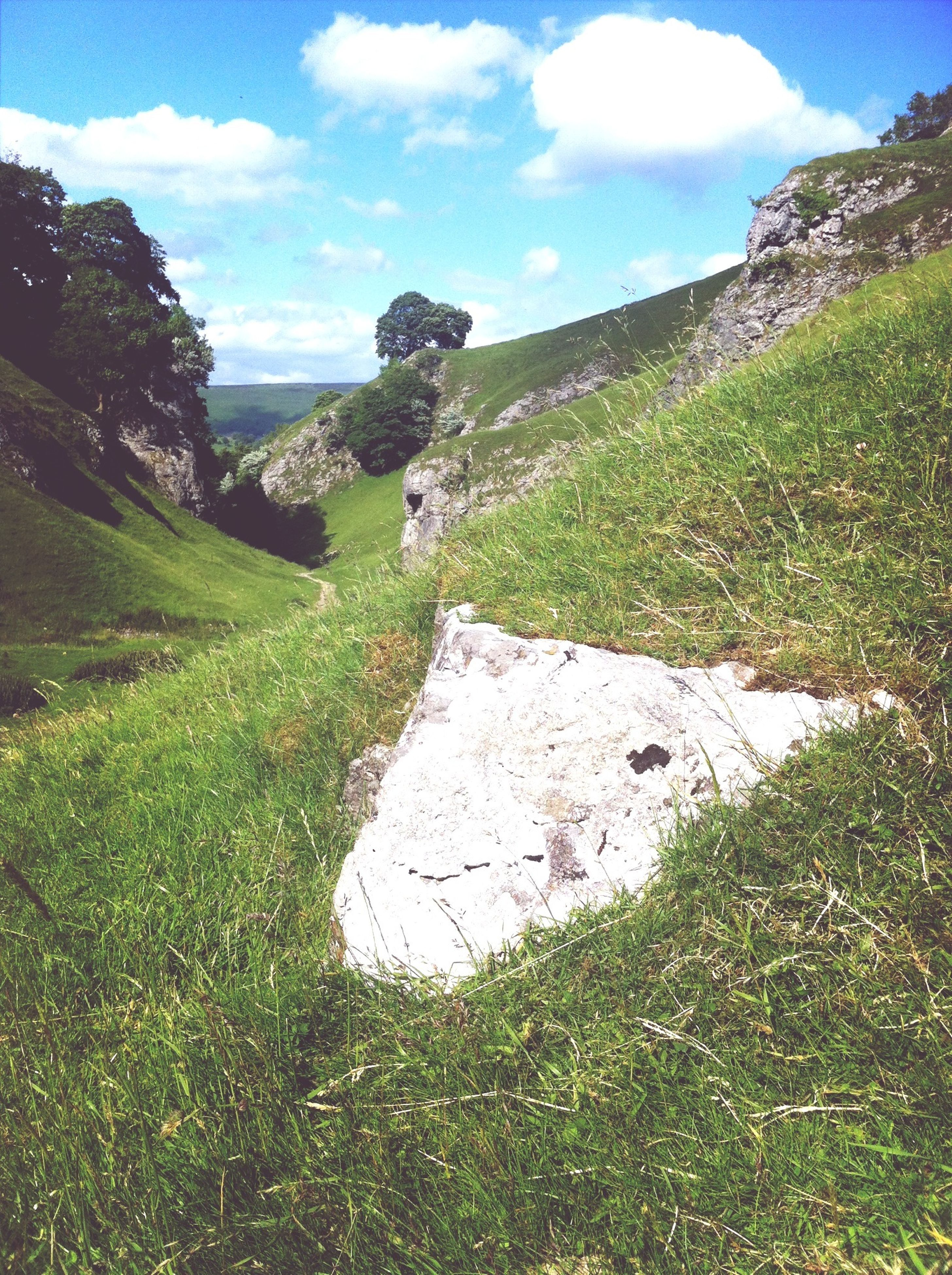 grass, sky, tranquility, tranquil scene, landscape, mountain, scenics, green color, nature, beauty in nature, cloud, grassy, non-urban scene, field, blue, plant, hill, tree, remote, sunlight