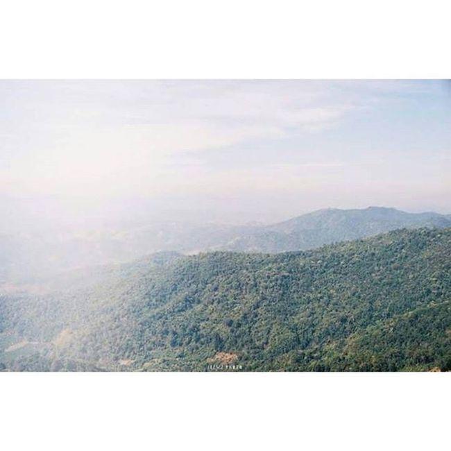 ดอยสุเทพ Yashicaelectro35 Film Filmstagram Filmnotdead Istillshootfilm Insta_thailand Beautiful_thailand Doisuthep Chiangmaithailand Doisuthep Mountains Summit Thailand_allshots Thailand