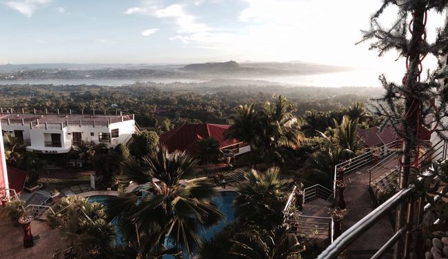 A Bird's Eye View Cebu Bohol Philippines Pool Poolside Resort Fog Tree Trees Palm Summer Stairs Stairs_collection