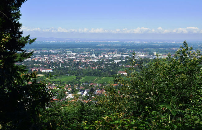 View on Offenburg Beauty In Nature Blue Cityscape Horizon Over Land Landscape Nature Offenburg Outdoors Scenics Sky Town Tree