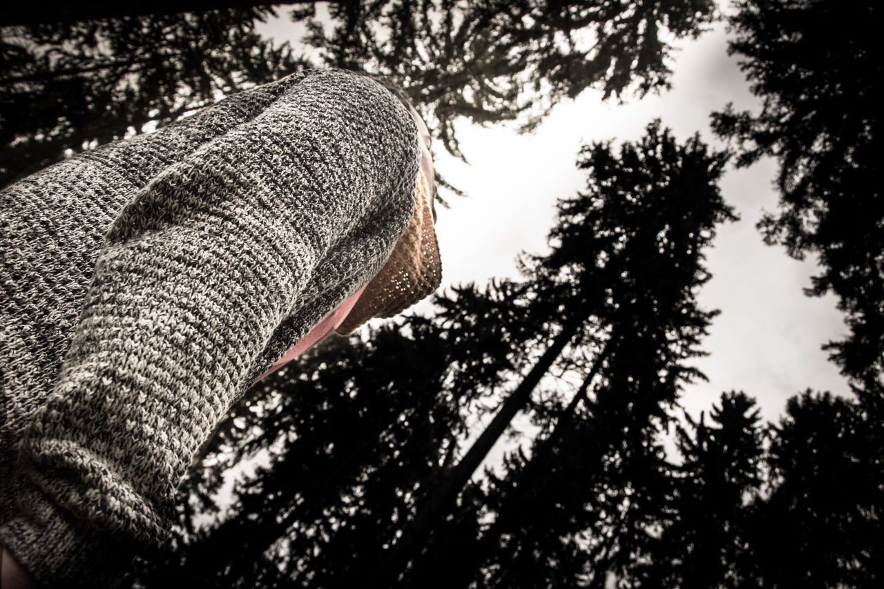 Tree Tree Trunk Low Angle View Day Real People One Person Nature Outdoors Human Body Part Close-up Sky People Eye4photography  EyeEm Nature Lover Black Forest