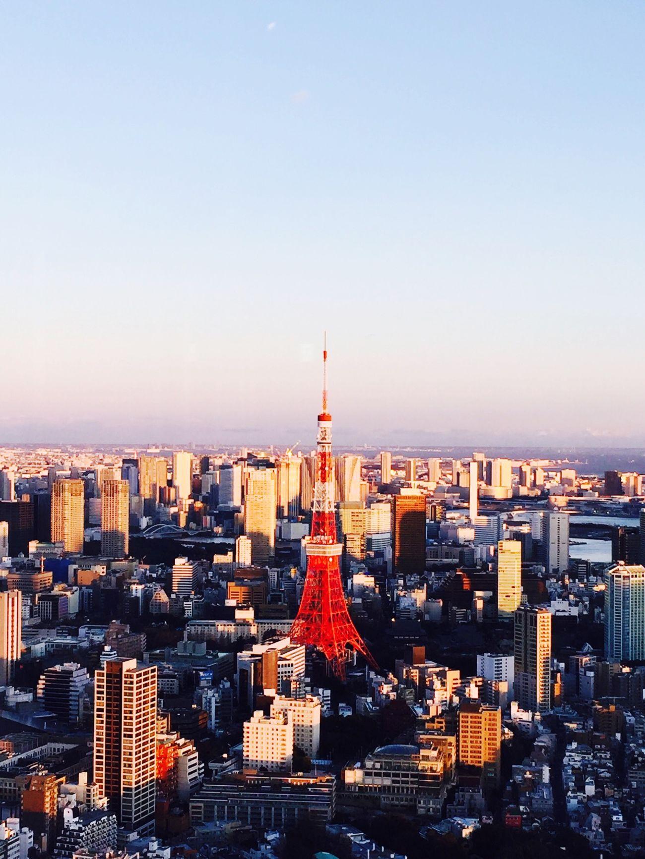 東京タワー Tokyo Tower 六本木ヒルズ Roppongi Hills 夜景 Night View 東京観光 Tokyo Tours