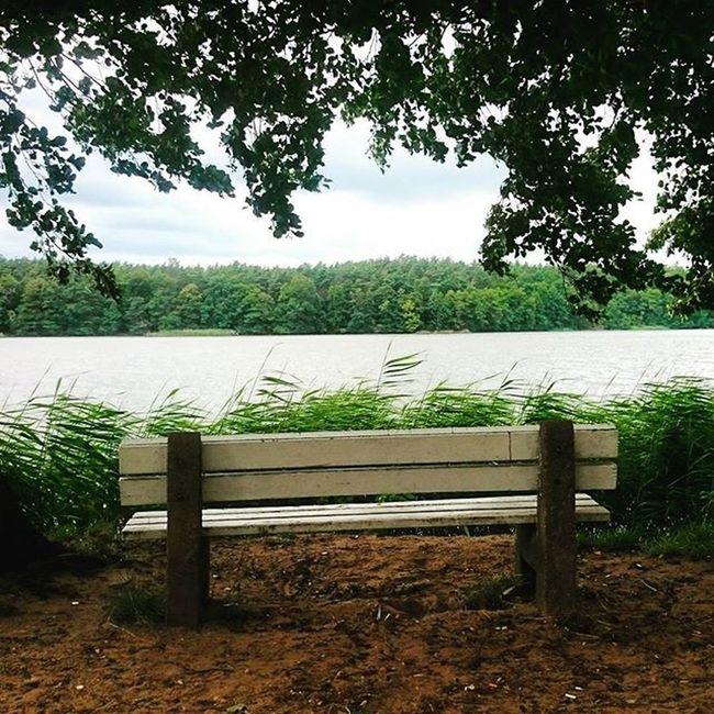"""Samotność...,choroba dzisiejszych czasów... """"Samotność jest jak czad,jeśli nie zwrócisz w porę na to uwagi,może cię zabić!"""" - Olivia Goldsmith Samotnosc Przystań Wolna ławka Refleksja Wycieczka Rowerowa Lake Trees Forest Nature Biketrip Loneliness Whitebench Truelife Architecture EwaJoannaMatczyńskaPhotography"""
