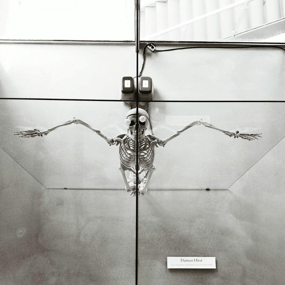 Art Art Gallery Skull Skull Art Skeleton Skeleton Art Arario