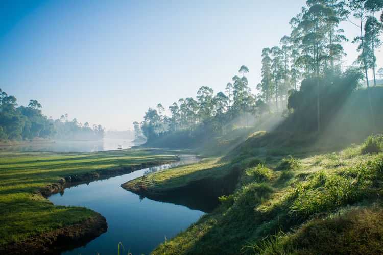 Sunshine... Fog Nature Water Tree Lake Landscape Sky No People Outdoors Scenics Beauty In Nature Day Rural Scene