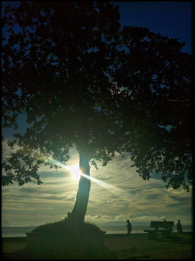 Early morning Stroll at the Boulevard ... XishiWanders WhenInDumaguete Goingsolo Solobackpacker Beautyinnature  Sunrise Silhouette Sunbeam Sky Tree Nature Serenity WanderingInSolitude SereneScene Solitude WanderingInSolitude