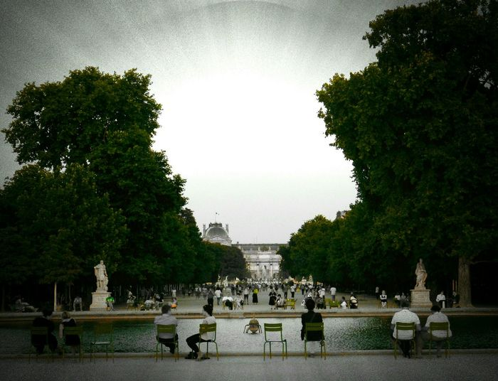 Paris, France  People Chairs Jardin Des Tuileries
