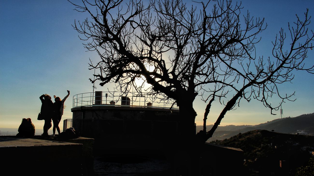 Celebrating normality. Beauty In Nature Barcelona, Spain Sunset Tree Outdoors Friends Barcelona