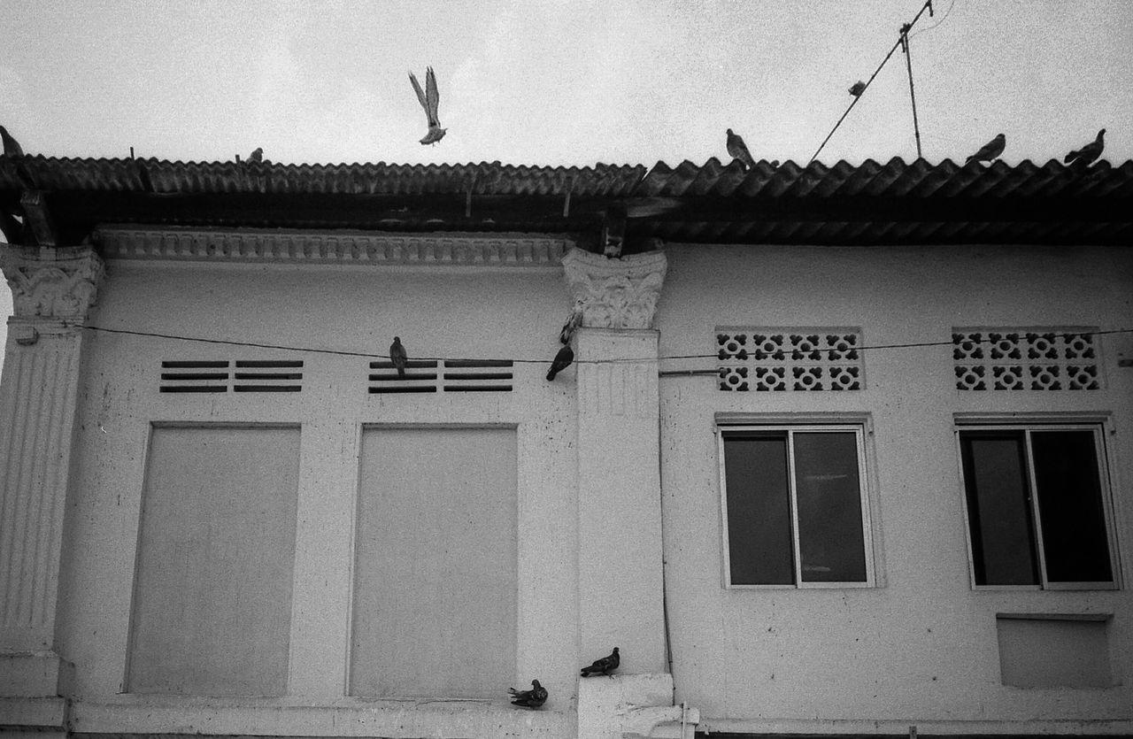 Street Photography Streetphoto_bw Film Photography Leica M6 Kodak 400TX Cmmaung Cmmaung.me Everybodystreet