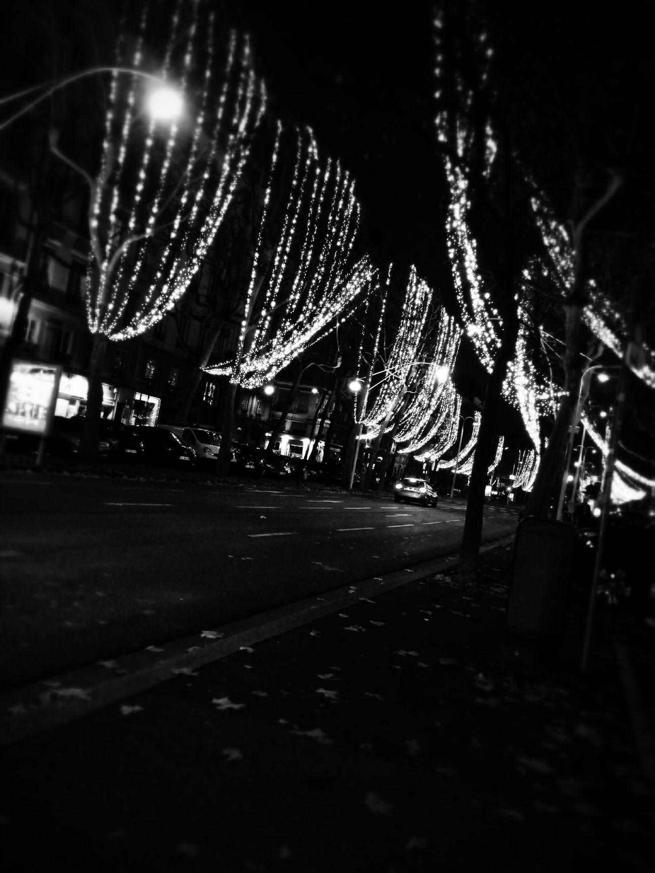 Lyon, France, Street, Foch