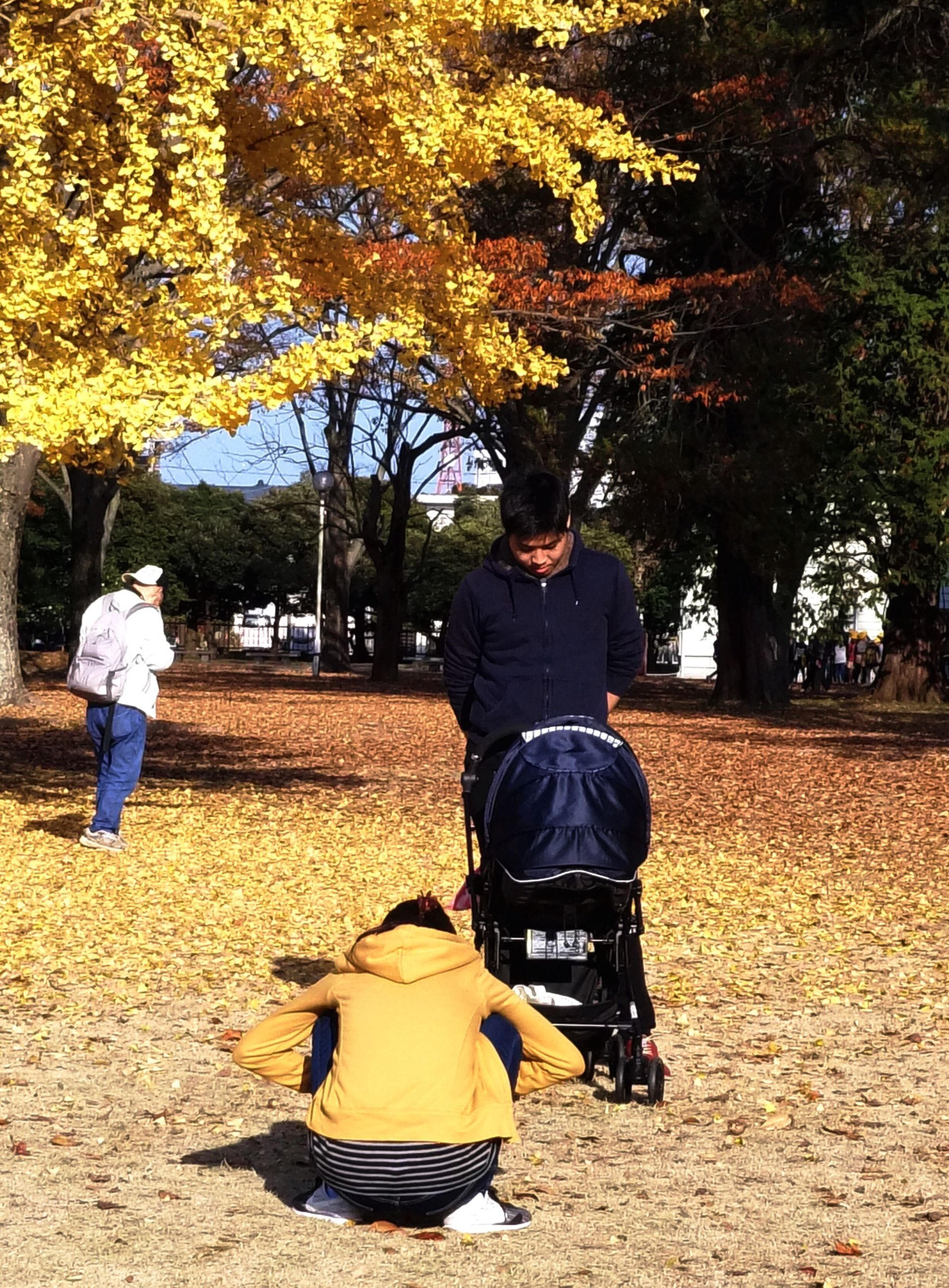tree, men, real people, park - man made space, two people, leisure activity, women, outdoors, baby stroller, adult, day, people, adults only