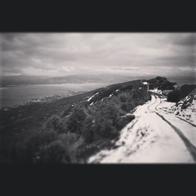 Nature Beauty Weather Instagrammers Igers Tagsforlikes Instagood Android Instagood Composition Focus Capture Winter Snow Tree Narlıdere Izmir Çatalkaya Landscape Naturelovers Canon 7D Picoftheday Photooftheday Monochrome bw bnw bestbw bestofday blackandwhite