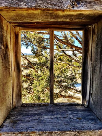 """Inside Out View"" Closeup view looking out a weathered window of an old abandoned stone ranch house in Central New Mexico, USA. Window Window View Weathered Weatheredwood Newmexicophotography NewMexicoTRUE Abandoned Buildings Ruraldecay RuralExploration Abandoned Places Newmexico Ranchhouse"