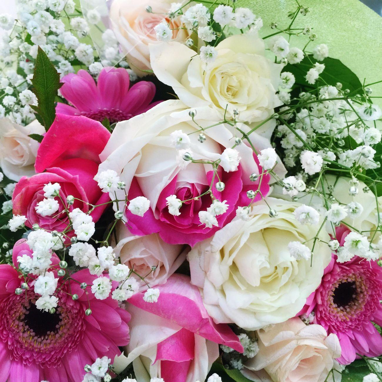 発表会 花束 Japan シャンソン発表会 ほっとする Rosé Flower White Pink