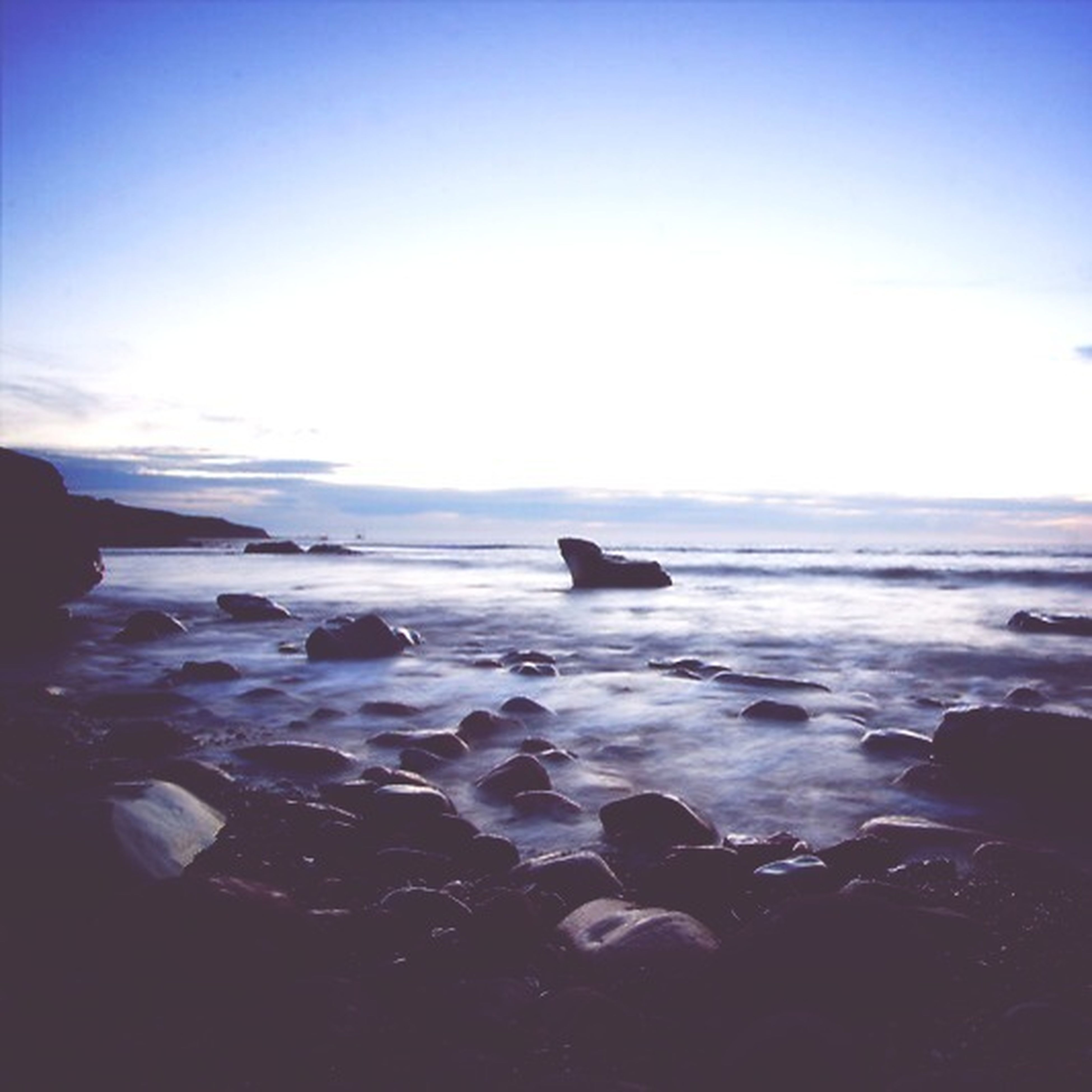 sea, water, horizon over water, blue, scenics, tranquil scene, tranquility, beauty in nature, nature, copy space, clear sky, sky, bird, beach, animal themes, one animal, shore, wildlife, idyllic, flying