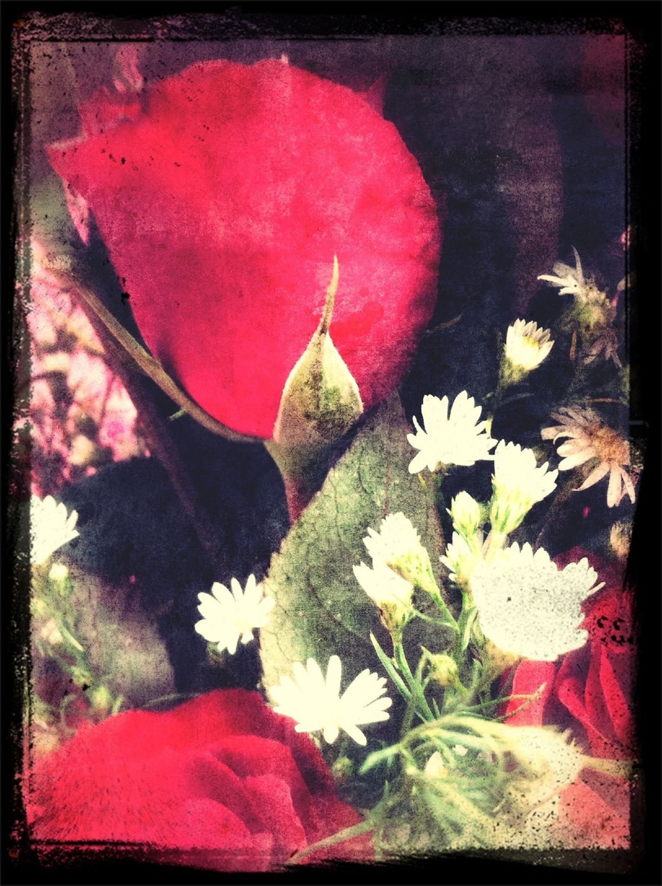 #roses #red #vintage #painting