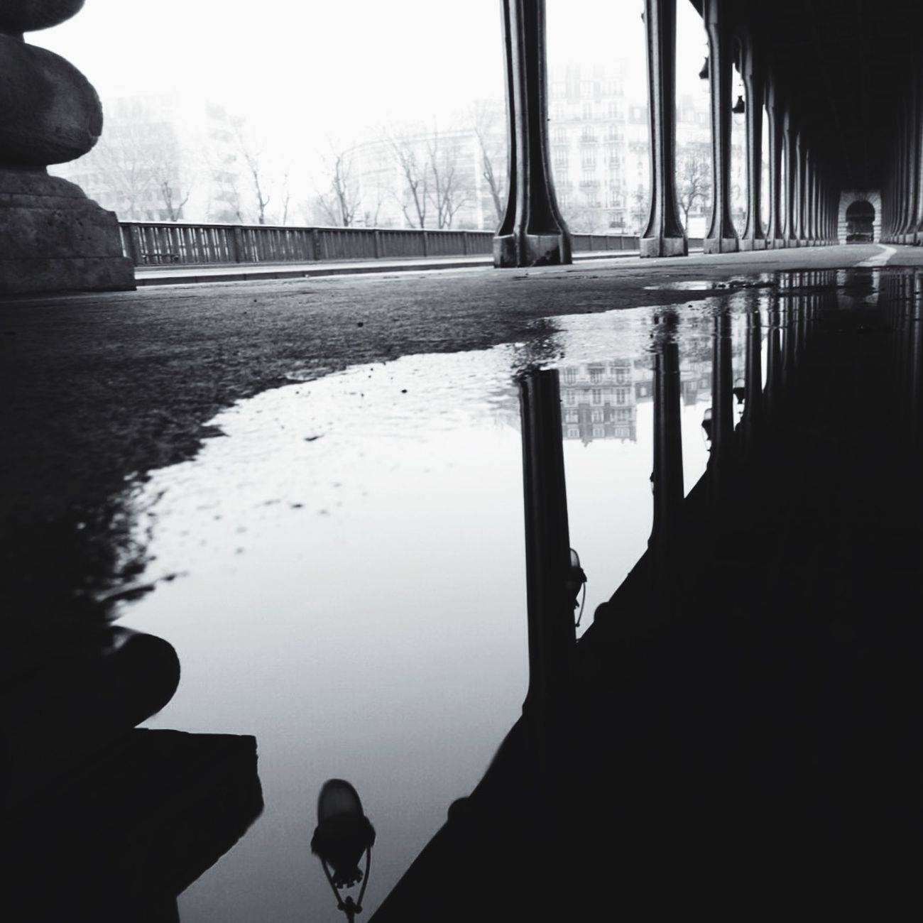 Puddle Time Puddleography BNW PARIS