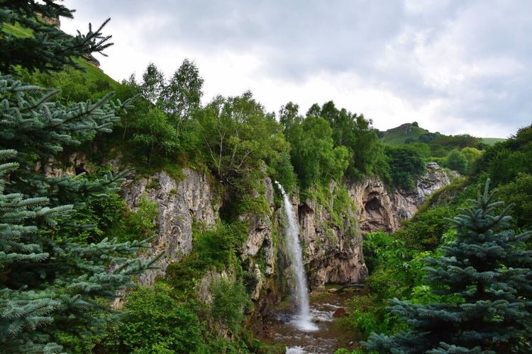 Waterfall Honey Tree Sky Nature Green Color Beauty In Nature Scenics No People Waterfall Outdoors Landscape Growth Plant Day Forest Water