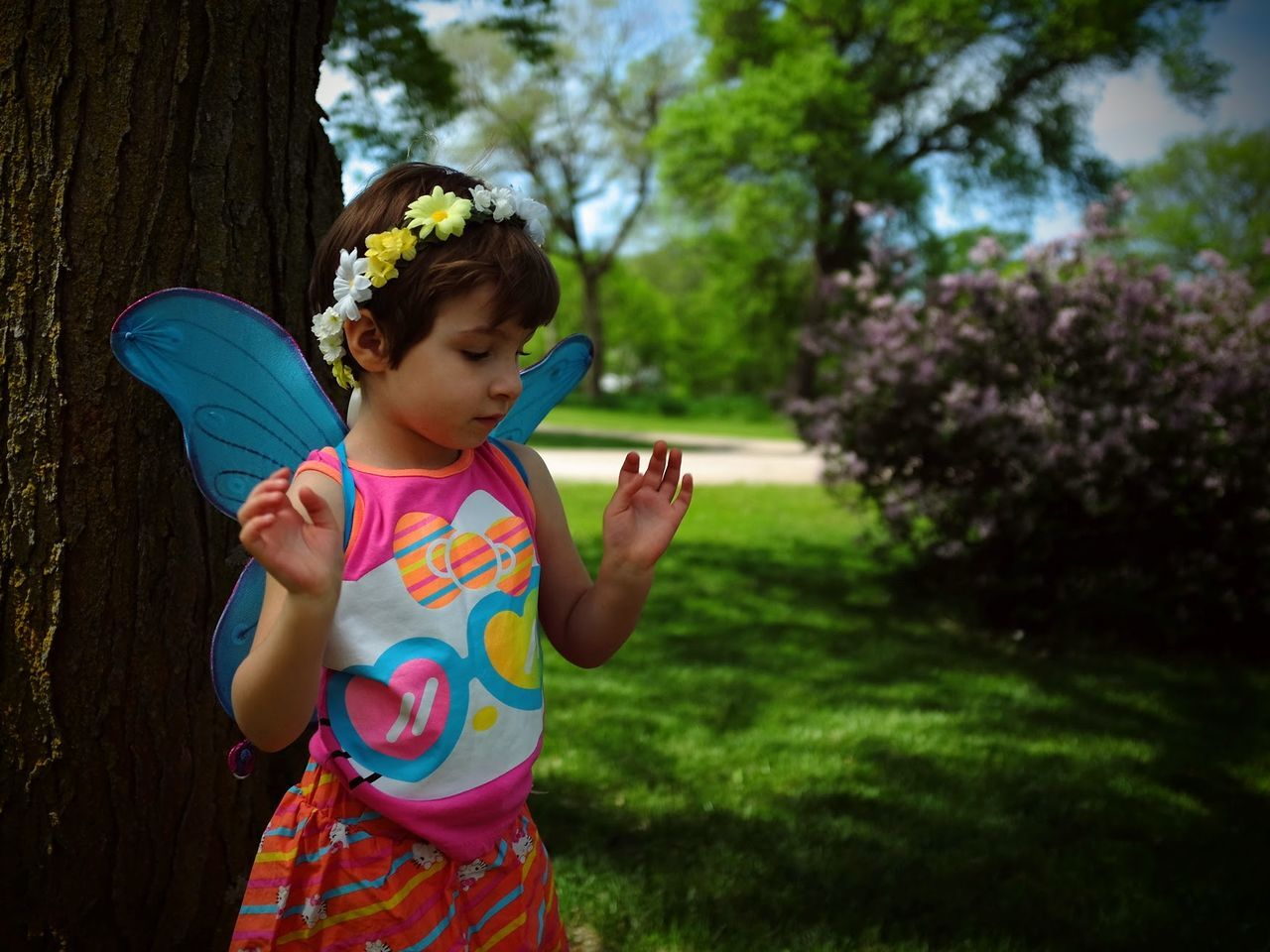 Beautiful stock photos of fairy,  4-5 Years,  Butterfly,  Childhood,  Costume Wing