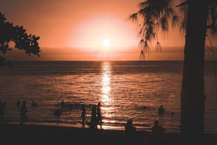 Feels like summer. Sunset Sea Beach Tree Water Silhouette Vacations Sun Beauty In Nature Sky Travel Nature Tranquility Horizon Over Water Beauty Travel Destinations Outdoors
