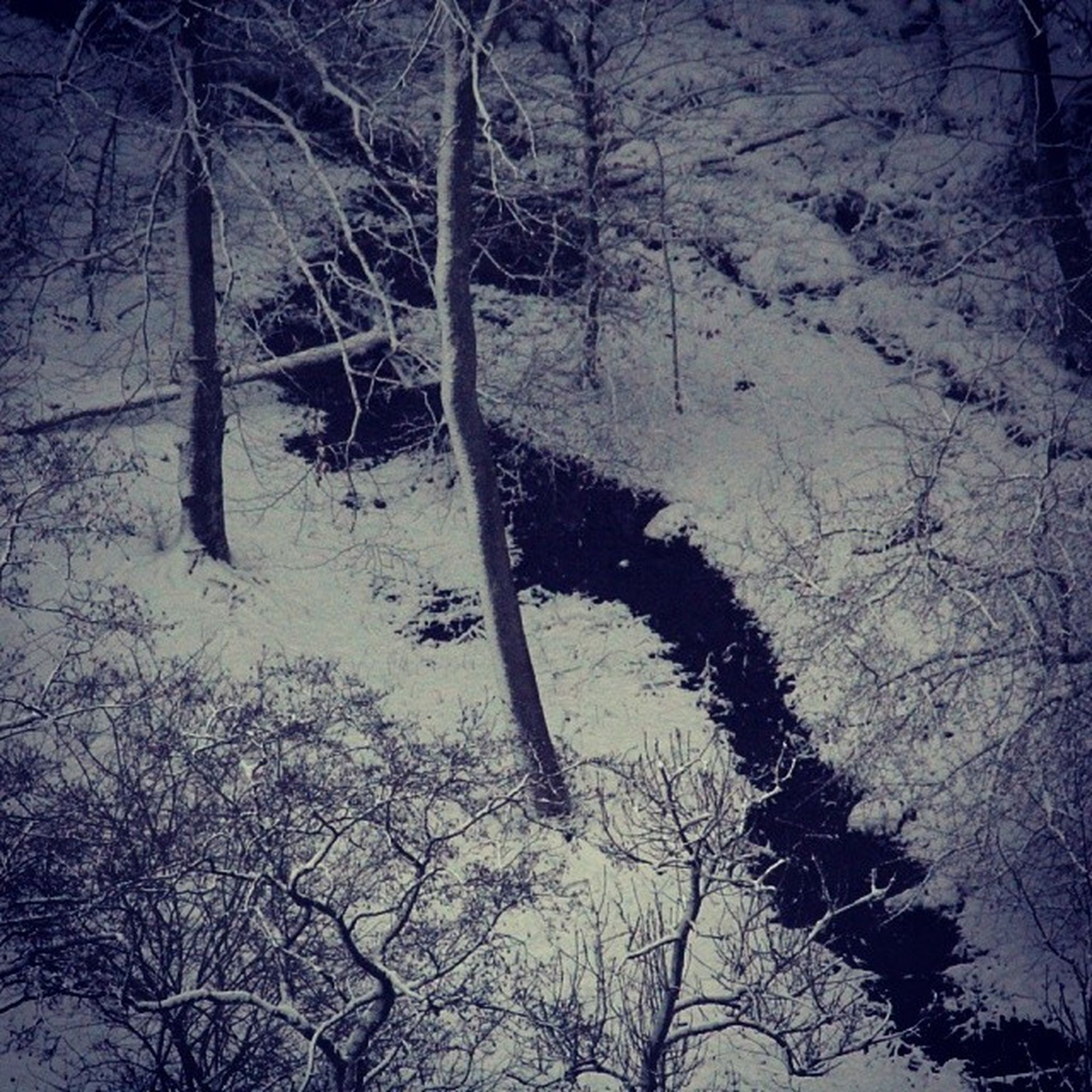 The small creek is still open Creek Instacreek River Instariver snow trees instatrees instablue winter instawinter white could Instagood Photooftheday Followme Beautiful Picoftheday Instadaily Amazing All_shots Instacool Cool Nature Instapic Igdaily Picstitch Instaphoto Goodmorning