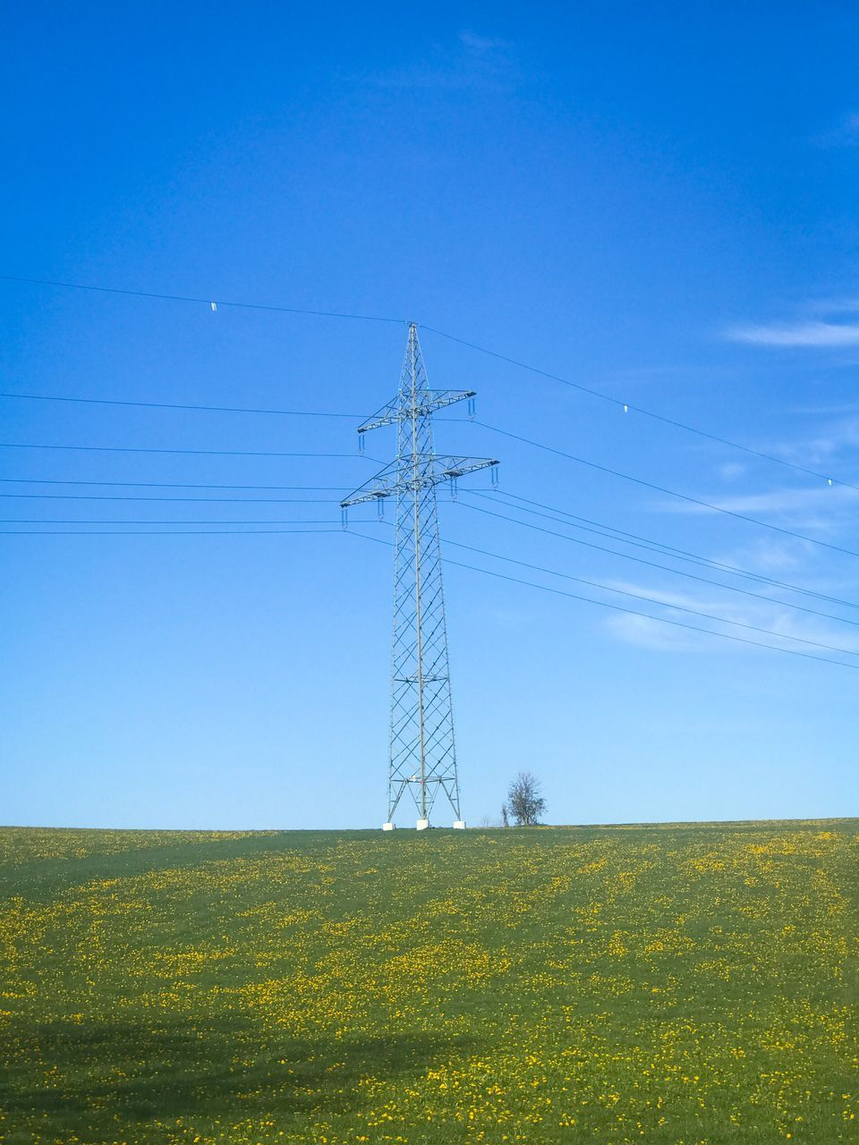 cable, field, electricity pylon, electricity, connection, landscape, no people, day, power supply, power line, fuel and power generation, grass, sky, nature, blue, low angle view, tranquility, tranquil scene, rural scene, outdoors, clear sky, growth, technology, scenics, beauty in nature, tree