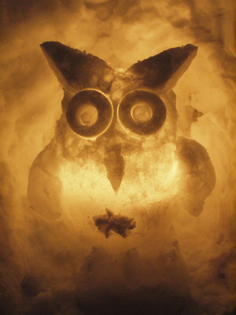 winter festival in Otaru 'Yuki akari no michi' (Otaru Snow Light Path) Otaru Owl Owls Snow Snow Candles Snowlight Winter Yukiakari