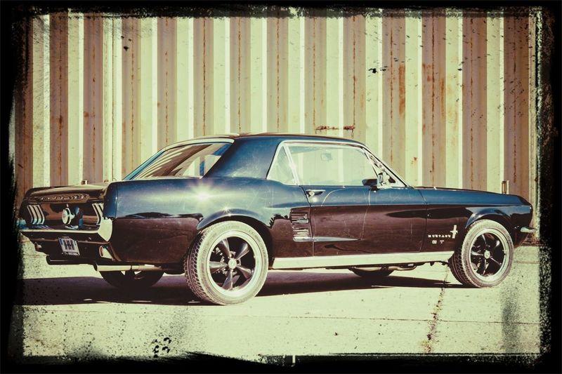 Ford Mustang Vintage Cars EyeEm Best Shots Enjoying The Sun