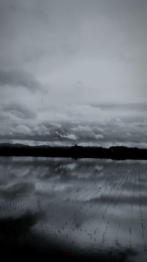 Clouds And Sky Water Reflections Monochrome