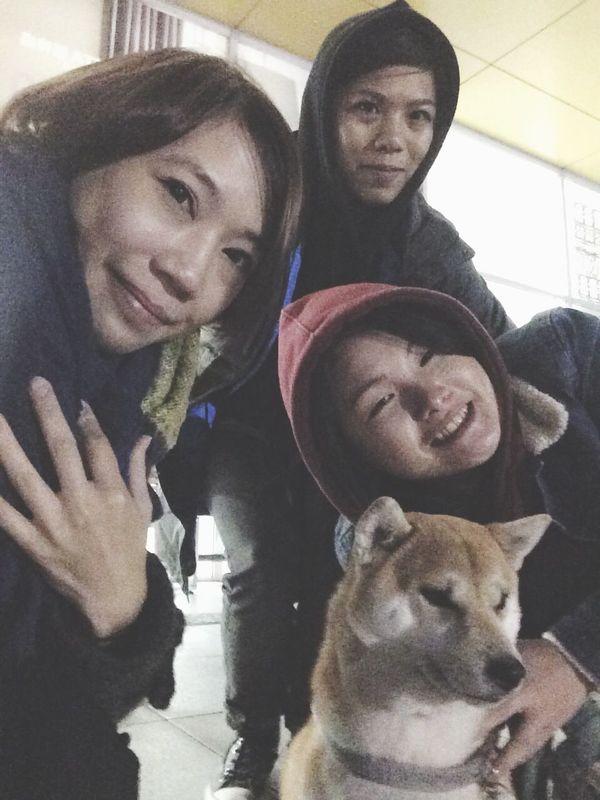 Dog Girls Friends