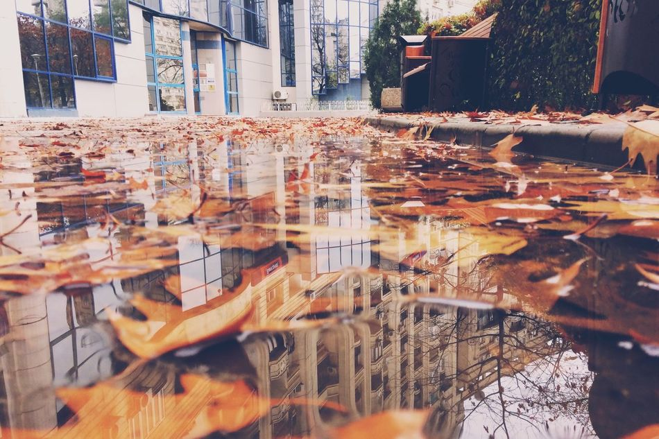 Autumn morning Reflection Autumn Nature Vscocam Textures And Surfaces Shootermag