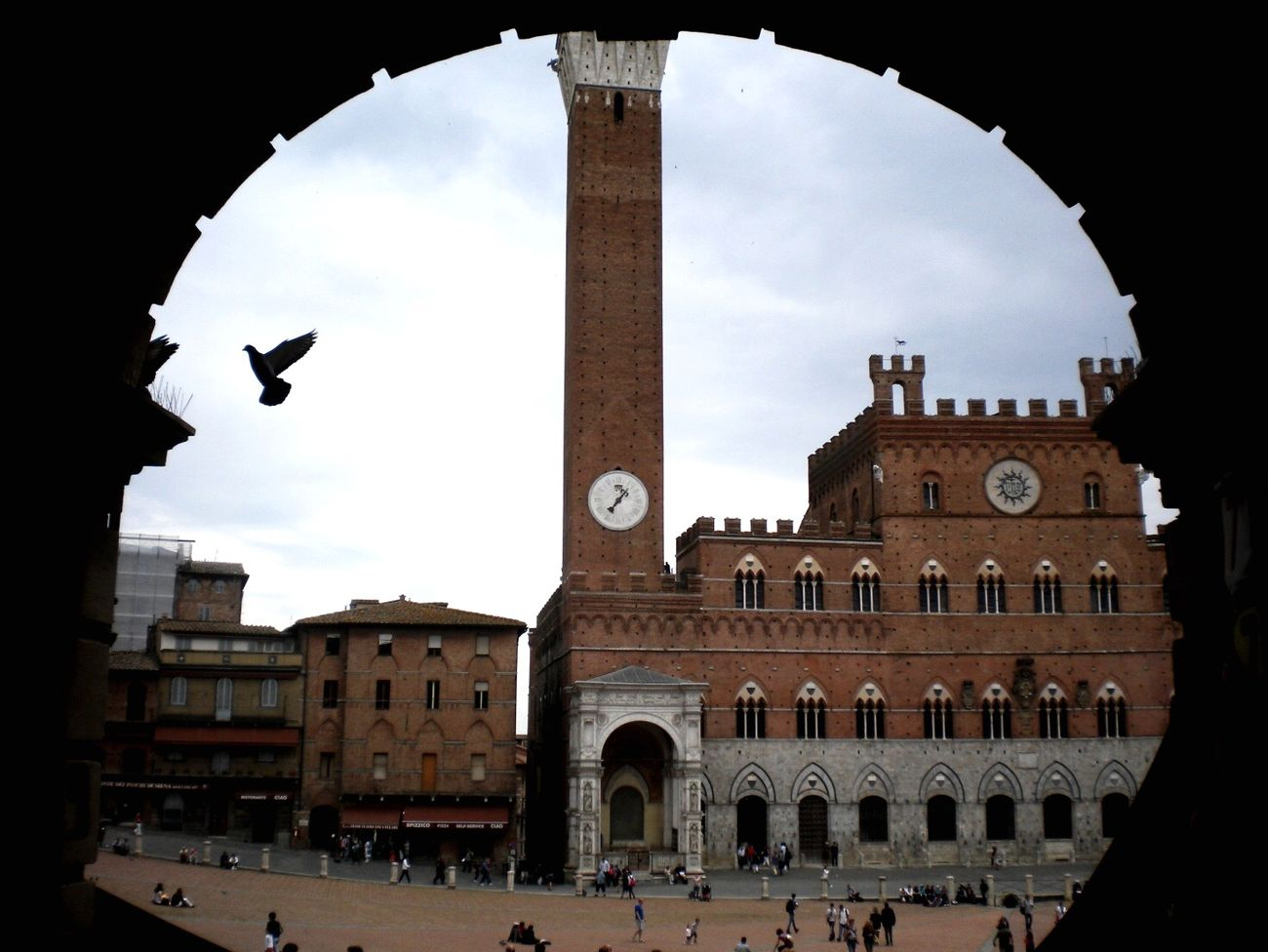 EyeEm Italy Italy Siena, Italy Piazzadelcampo Beauty