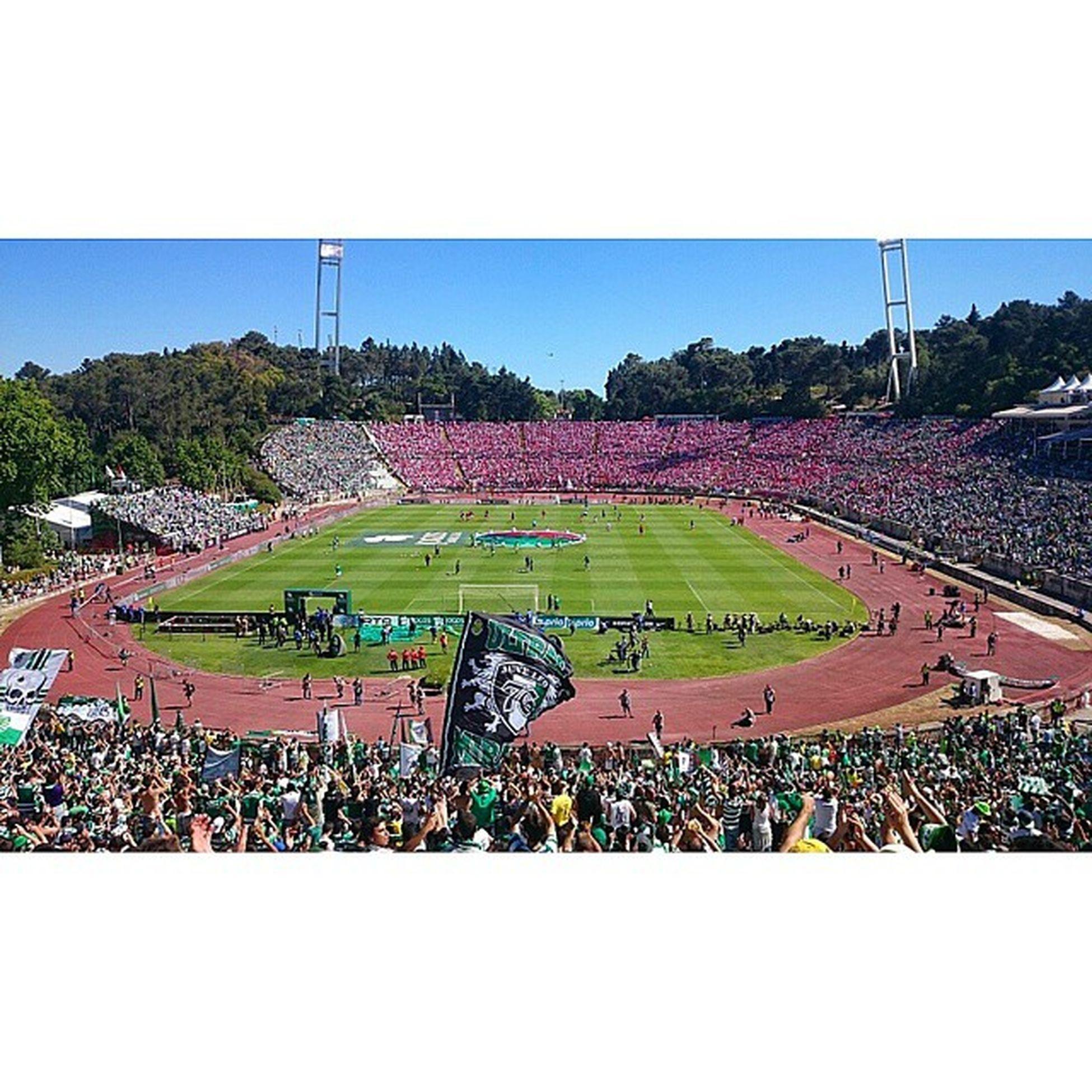 Jamor Sporting Juveleo Juventudeleonina AteAoFim EmModoJamor DiaDeSporting OndaVerde