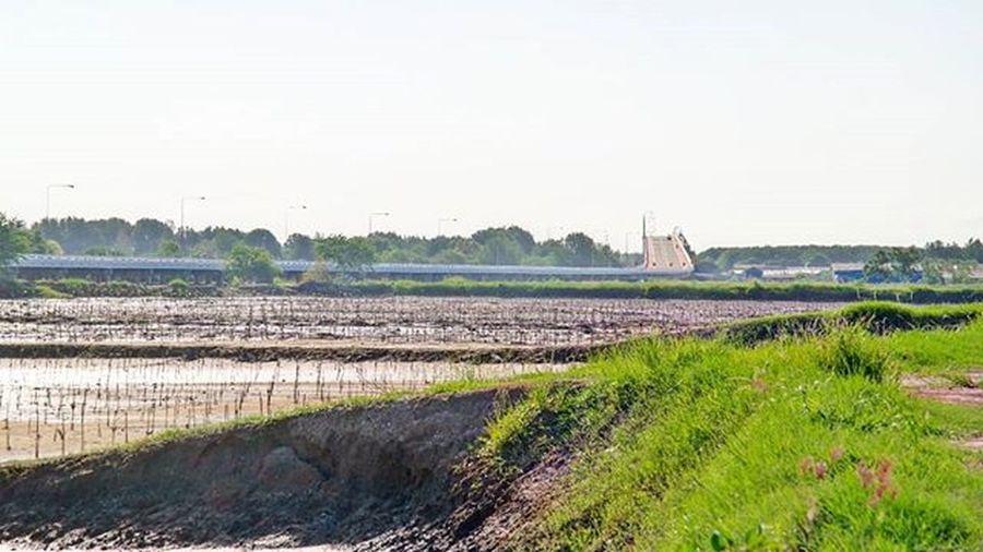 Test for new upload Landscape Countryside Homesick