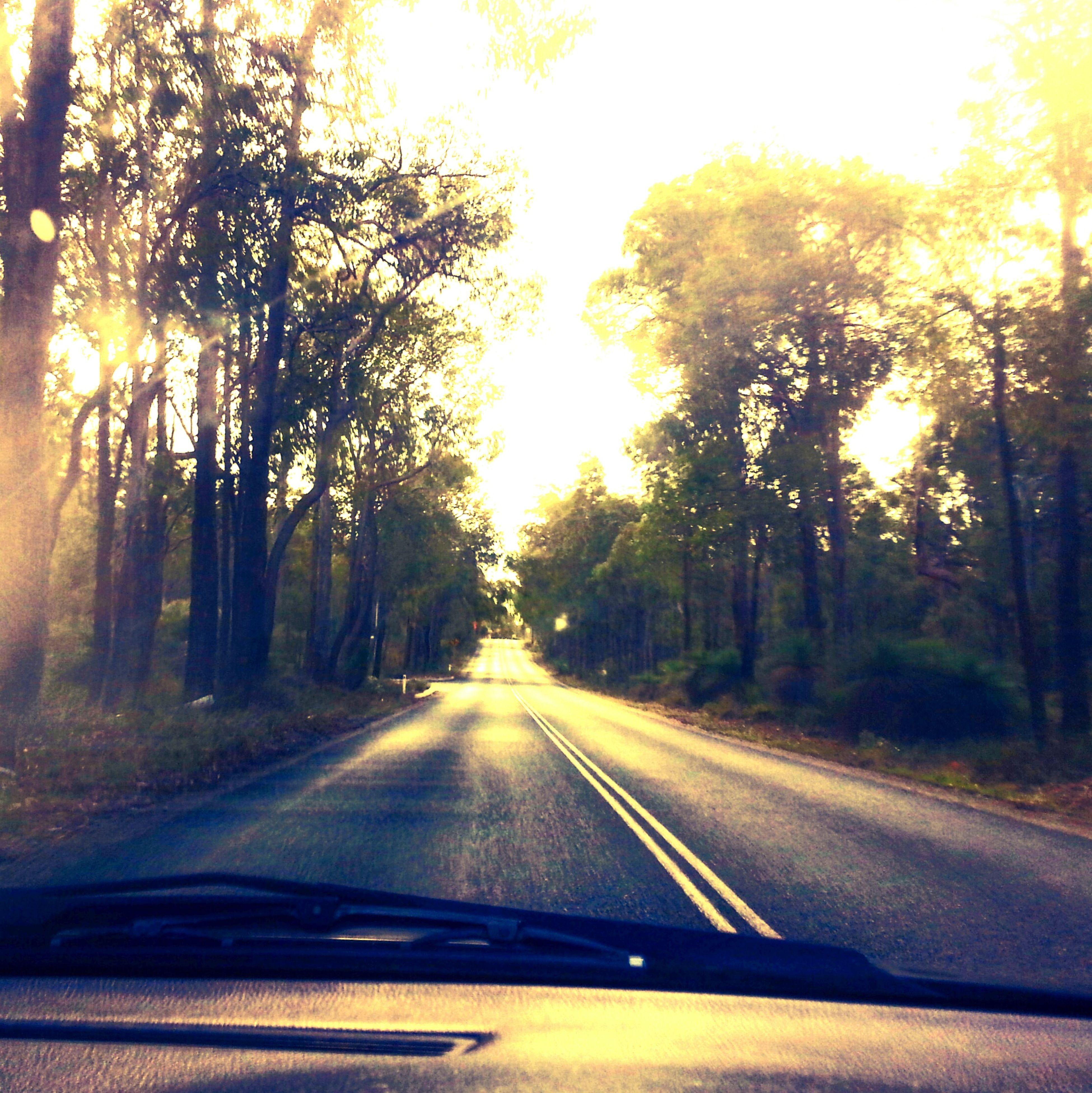 the Road Beneath My Wheels