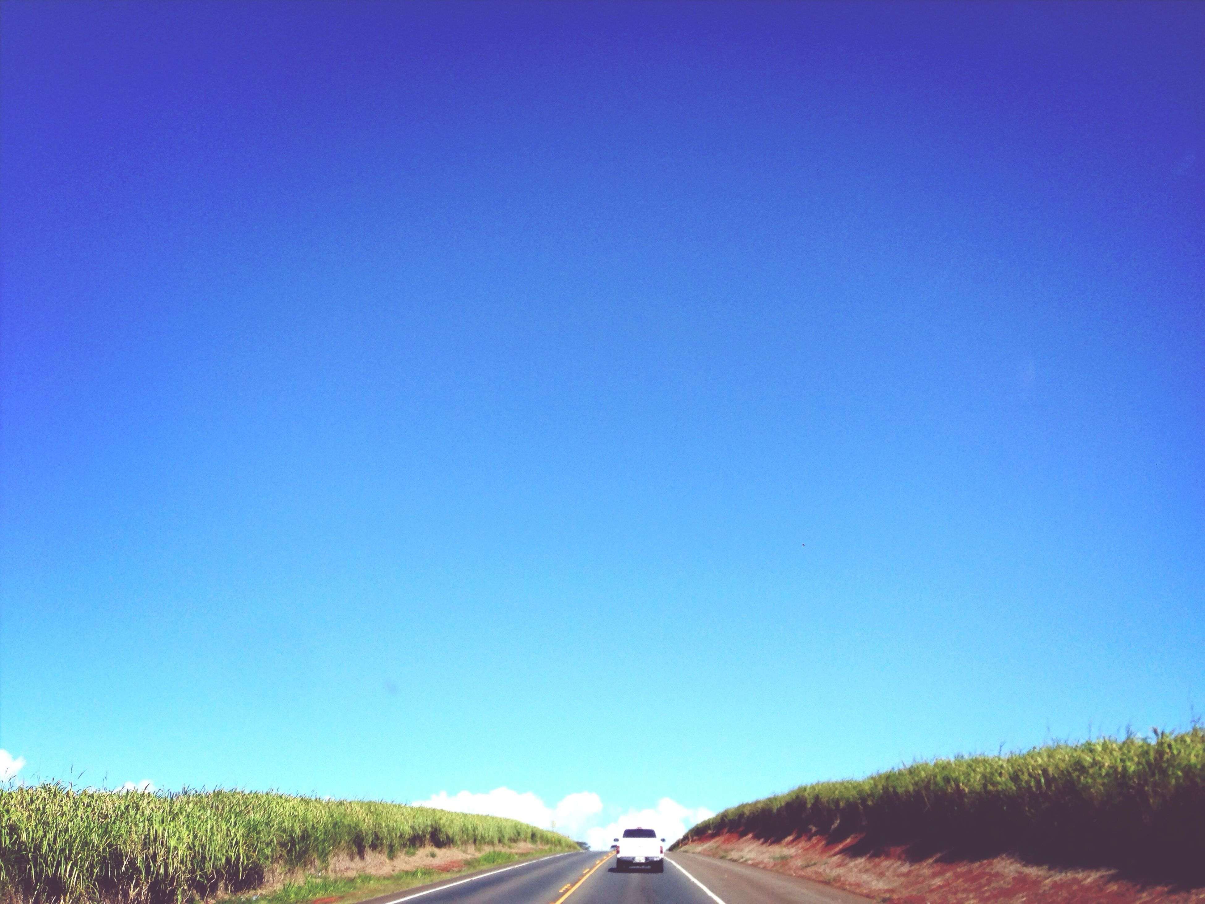 transportation, clear sky, blue, road, copy space, the way forward, car, mode of transport, land vehicle, road marking, diminishing perspective, tree, country road, vanishing point, outdoors, nature, on the move, no people, street, beauty in nature