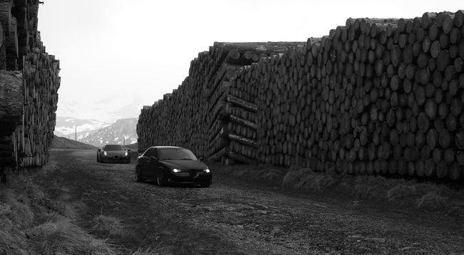 "Auf dem ""Holzweg"" (Barking up the wrong tree) Blackandwhite Cars Curiousmoments Driving Around Holzweg Lukmanierpass Mountain Road Through The Woods Timber Traffic Tree Trunk Wood Wrong Direction Wrong Way Switzerland Alfa Romeo"