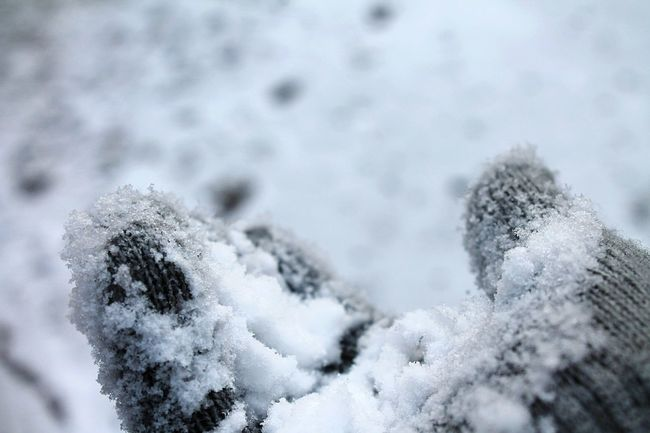 Snowy Cold Temperature Winter Winter_collection It's Cold Outside Snow Day Mittens Hand First Snow Snow Covered Closer Look Covered In Snow Fresh Fallen Snow Snow Fallen Snow Taking A Closer Look Snowflakes POV Change Your Perspective Wintertime Winter Time