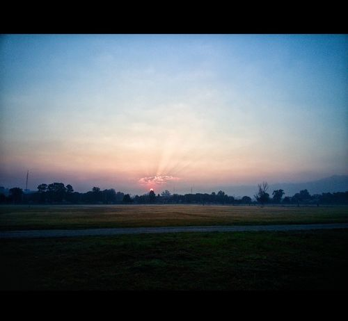 Nature Beauty In Nature Freshness No People Sunset Outdoors